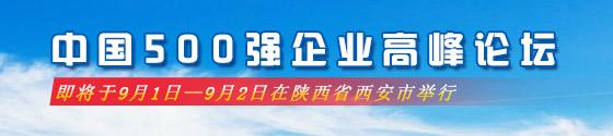 中国500强企业高峰论坛